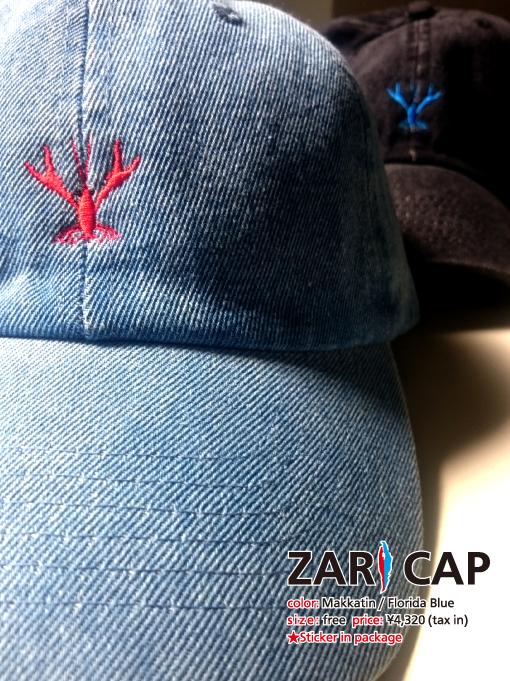 ZARI CAP